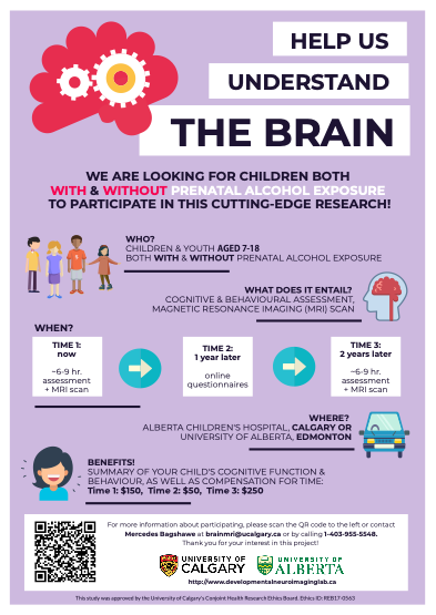 Infographic Help Us Understand the Brain